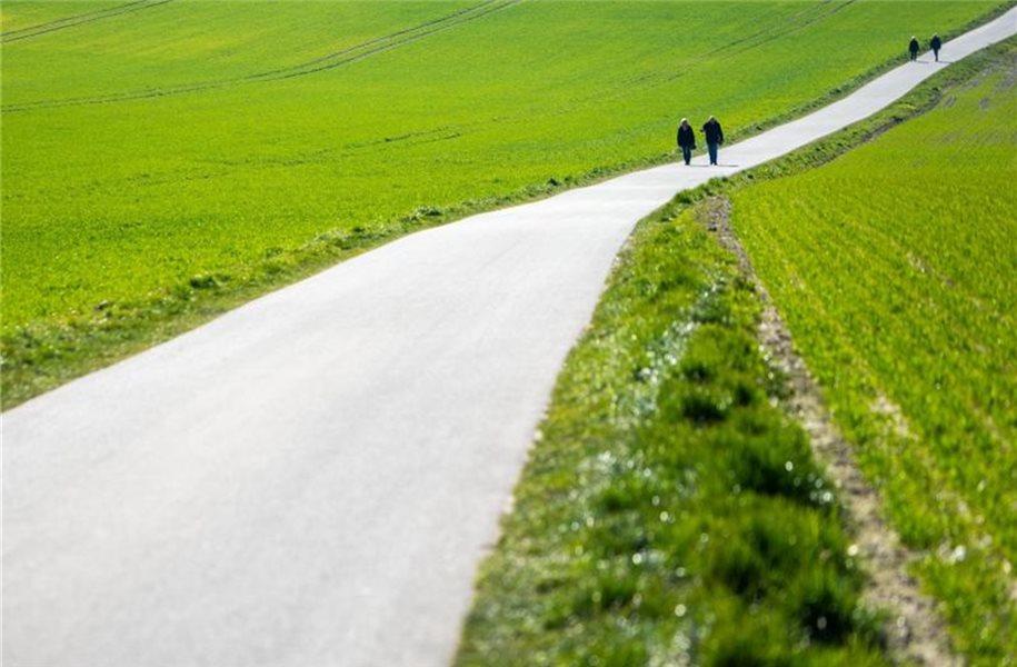 Spaziergangsforscher