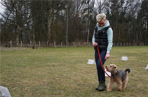 Crazy Dogs richten erstmals Rally Obedience Turnier aus